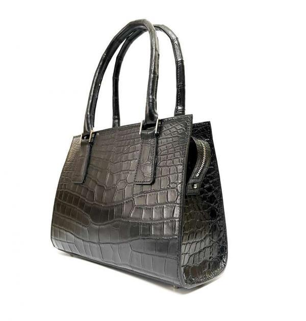 Ambitieuse Crocodile Noir